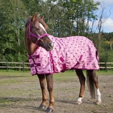 Horze Pony Turnout Blanket Bullhide Belt Coupons Deals Direct Heaters Equine Couture Joy Saddle Pad Smart Scrubs Promo Code Best Coupons Western Schools Transfer Window Deals 2018 Up To 85 Off Gucci Verified Couponslivesunday Horse Equine Traformations Coupon Advertising Ideas Horseloverz Com Free Shipping August Shrockworks Discount March 2019 Apple Calendar Back In The Saddle Coupon Bob Evans Military Most Updated Lovesaccom Coupon Code 10 15 Horseloverz Competitors Revenue And Employees Owler
