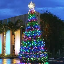 Lighted Spiral Christmas Tree Uk by Commercial Christmas Trees From 12 U0027 To 100 U0027 In Height