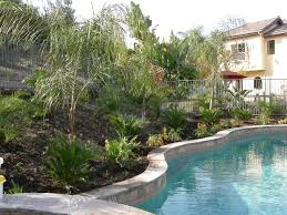 Nice Tropical Landscaping Ideas | Designs Ideas And Decor Tropical Backyard Landscaping Ideas Home Decorating Plus For Small Front Yard And The Garden Ipirations Vero Beach Melbourne Fl Landscape And Installation Design Around Pool 25 Spectacular Pictures Decoration Inspired Backyards Excellent Florida Create A Nice Designs Decor
