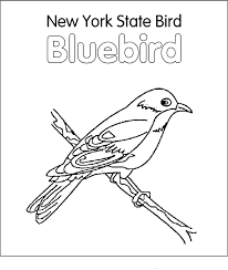New York State Bird Blue Coloring Page