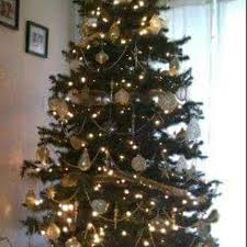 8 Ft Prelit Xmas Tree With Rotation One Set Of Lights Goes On