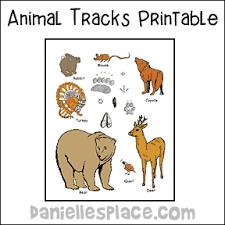Animal Tracks Matchup Color Sheet