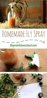 How To Get Rid Of Flies | 13 Natural And Homemade Fly Repellents How To Get Rid Of Flies In Backyard Outdoor Goods Diy Using Pine Sol To Of House Youtube 25 Unique What Kills Fruit Flies Ideas On Pinterest Pest Keep Away Repellent Rid Rotline Do I Get Solana Center For 3 Ways Around Your Dogs Water And Food Bowls Fruit Kill Do You Chicken Coop For Happier Hens Coops Those Pesky Flies From Pnic Areas Easy Home Remedy Coping With The Fall The New York Times Outdoors Step By