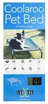 Coolaroo Dog Bed Large by Coolaroo Elevated Dog Bed Medium Buy Online In South Africa