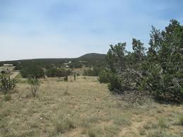 Mccalls Pumpkin Patch Moriarty New Mexico by Real Estate For Sale 5 A 133 Aka Cedar Hill Lane S Moriarty
