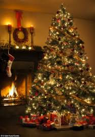Are Christmas Trees Poisonous To Dogs Uk by What U0027s Lurking In Your Christmas Tree Up To 25 000 Creepy