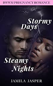Stormy Days Steamy Nights BWWM Pregnancy Romance Novel For Adults
