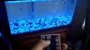 Custom RGB LED Aquarium Light - YouTube I Really Want A Jellyfish Aquarium Home Pinterest Awesome Fish Tank Idea Cool Ideas 6741 The Top 10 Hotel Aquariums Photos Huffpost Diy Barconsole Table Mac Marlborough Tank Stand Alex Gives Up Amusing Experiments 18 Best Fish Images On Aquarium Ideas Diy Clear For Life Hexagon Hayneedle Bar Custom Tanks Ponds Designs For Freshwater Modern 364 And Tropical Ov Cylinder 2