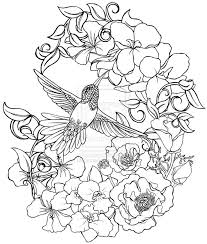 Humming Bird Flower Coloring Pages Colouring Adult Detailed Advanced Printable Kleuren Voor Volwassenen Coloriage Pour Adulte