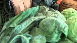 Pumpkin Patch Near Madison Wi by Jerry Smith Produce U0026 Pumpkin Farm Kenosha Now Youtube