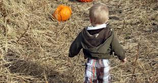 Pumpkin Patch Sioux Falls Sd by Pumpkin Patches Visit Sioux Falls Family First In Sioux Falls