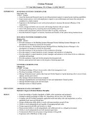 Download Systems Coordinator Resume Sample As Image File