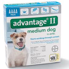 flea treatment for cats advantage ii flea for dogs bayer advantage ii topical