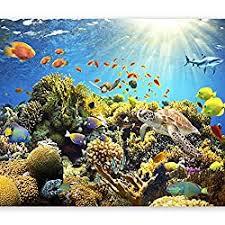 decowall dwt 1811 korallenriff fisch wandtattoo wandsticker