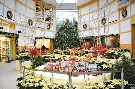 Cleveland Botanical Garden a holiday hotspot – The Observer