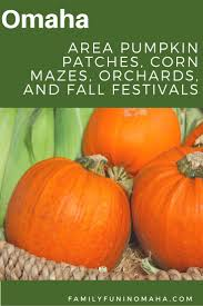 Valas Pumpkin Patch Omaha Hours by 145 Best Family Fun In Omaha Images On Pinterest Nebraska 50