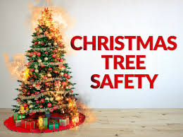 Xmas Tree Waterer by Christmas Tree Safety Science Experiments Steve Spangler Science