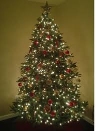 8ft Artificial Christmas Trees8 Ft Trees 8 Foot Prince Flock