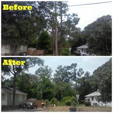 Tile Center Augusta Ga Hours by Arborist Augusta Ga The Arbory Tree Service