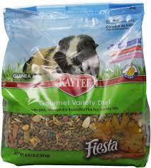 Can Guinea Pigs Eat Salted Pumpkin Seeds kaytee fiesta gourmet variety diet guinea pig food 4 5 lb bag