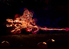 Hudson Valley Pumpkin Blaze Promo Code by 26 Best Jacob U0027s Pumpkins Images On Pinterest Dinosaurs Pumpkin