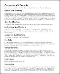 Example Of A Great Resume Summary For Best Format Sample Job In