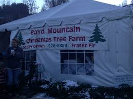 Fraser Fir Christmas Trees North Carolina by December 2014 Finding Family Adventures