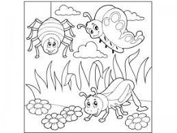 Bugs Activities For Preschool