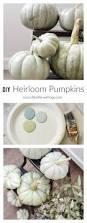 Fake Carvable Plastic Pumpkins by Best 25 Pumpkin Arrangements Ideas On Pinterest Pumpkin Floral