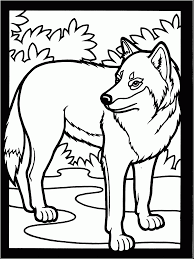Incredible Wolves Coloring Pages With Wolf And Online