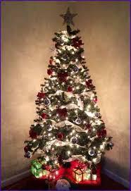 Pinery Bonita Pumpkin Patch by Pinery Christmas Trees Bonita Home Design Ideas
