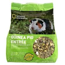 Can Guinea Pigs Eat Salted Pumpkin Seeds by Musely
