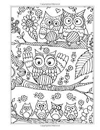The Eclectic Owl An Adult Coloring Book By GT Haddix