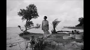 Sinking Islands In The South Pacific by Sagar Island Is Sinking Youtube