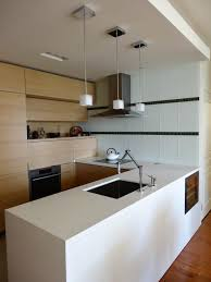 100 European Kitchen Design Ideas Cabinets Small Pictures