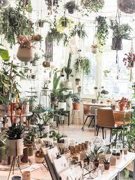 jungle wohnen stylen mit pflanzen waldsinnig