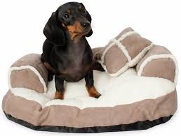 Mammoth Dog Beds by Browse Aspen Pet Products Entirelypets