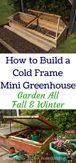 446 Best Fall Garden Guide | Gardening | Harvesting | Vegetables ... 484 Best Gardening Ideas Images On Pinterest Garden Tips Best 25 Winter Greenhouse Ideas Vegetables Seed Saving Caleb Warnock 9781462113422 Amazoncom Books Small Patio Urban Backyard Slide Landscaping Designs Renaissance With Greenhouse Design Pafighting Fall Lawn Uamp Gardening The Year Round Harvest Trending Vegetable This Is What Buy Vegetables Fresh And Simple In Any Plants Home Ipirations