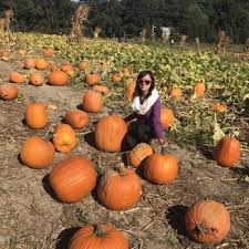 Pumpkin Picking Places In South Jersey by Giamarese Farm 77 Photos U0026 36 Reviews Farmers Market 155
