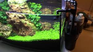 Petco Fish Aquarium Decorations by Petco 6 25 Arc Update With Filter And Lighting Upgrade Youtube