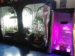 chambre de culture cannabis complete chambre de culture gascity for