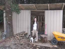 dahkero cheap shed roof ideas