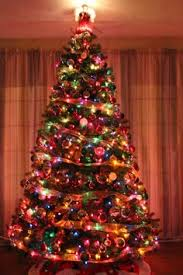 tree decorated in multi colored lights do you