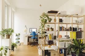 mit raumteilern kleine räume richtig nutzen interior tipps