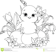 Coloring Pages Baby Chicks And Chick Easter Pictures Free Full Size