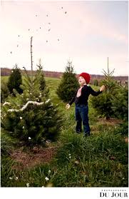 Christmas Tree Farm Lincoln Ne by 278 Best Photog Family Sessions Images On Pinterest Family