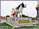 image de Sanharó Pernambuco n-15