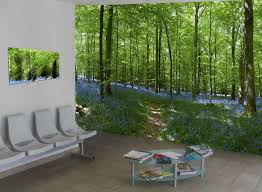 simple decoration nature wall murals cosy wall murals nature