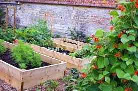Vegetable And Flower Garden Download Rustic Country With Raised Beds Stock Photo Image