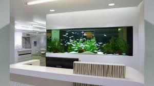 wohnzimmer aquarium